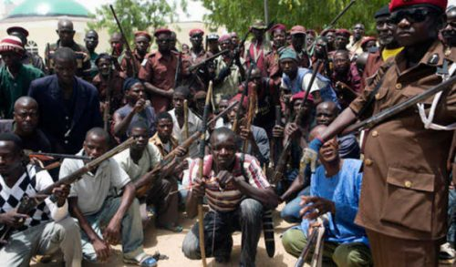 STATS: 680 Civilian JTF members died fighting Boko Haram in Borno