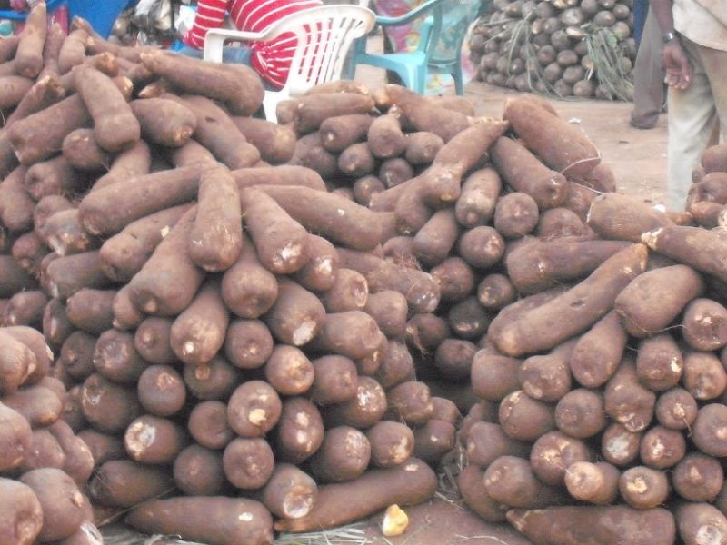 Nigeria targets export of 480 tonnes of yam monthly in 2018