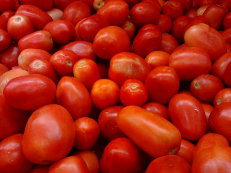 5,000 tomato farmers not able to meet Dangote's factory demand