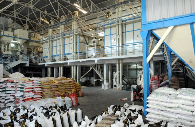 Anchor Borrowers Programme: We'll stop importing rice by 2019