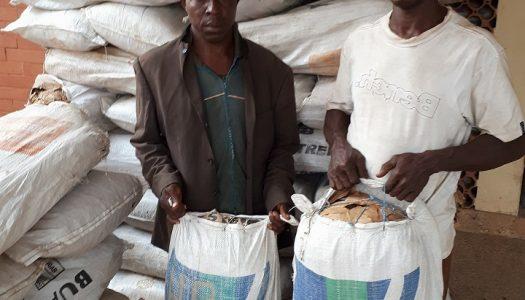 Indian hemp warehouse discovered in Edo – NDLEA