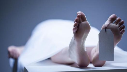 DISCOVERY! Body's cells still function even 2days after a person's death
