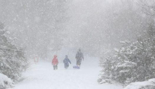 UK snow storm kills 10, army called to help
