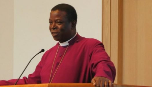 Blaming past governments is moral evil – Primate