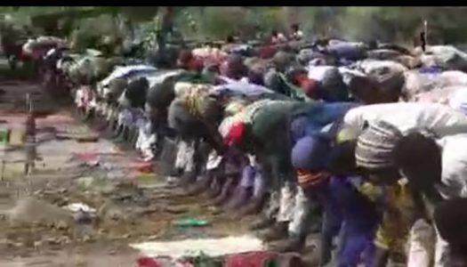 Watch video of how Boko Haram marked Eid-el-Fitr in Sambisa
