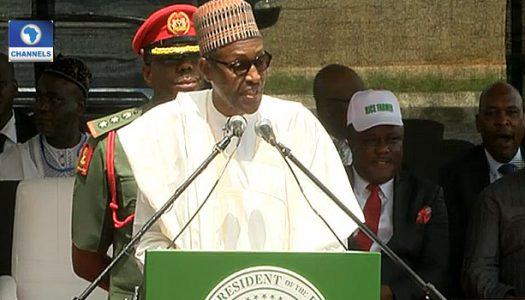 Education, key to industrialization and development – Buhari